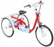 fiets voor zware personen